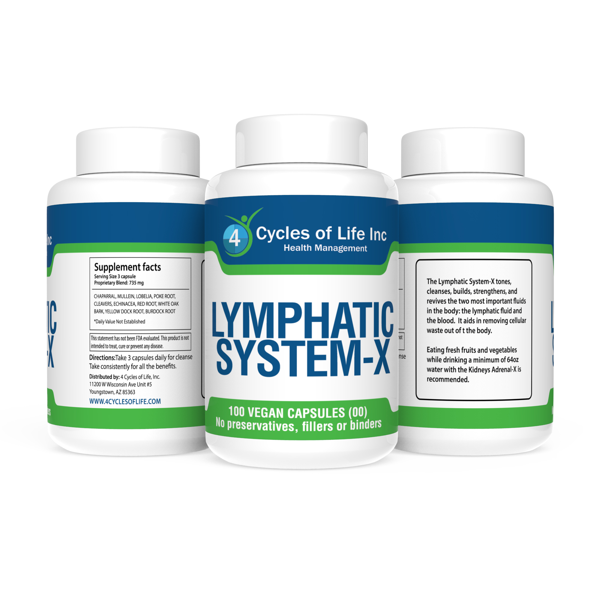 Lymphatic System X 4 Cycles Of Life Inc